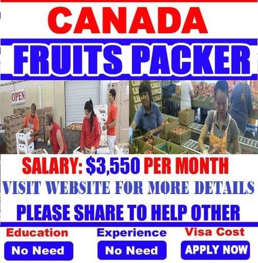 250 Packer Jobs in Canada Food / fruit packing Vacancies 2021